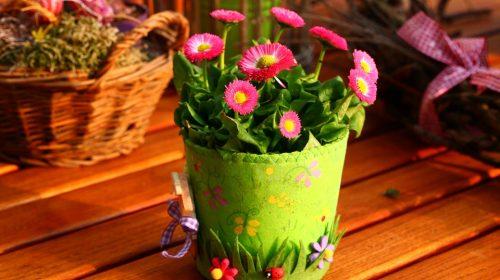 spring-800240_960_720