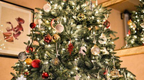 christmas-tree-1081981_960_720