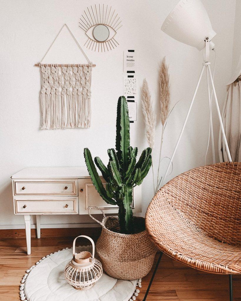 living spatiu de relaxare cu mobila alba scaun din rachita si cactus
